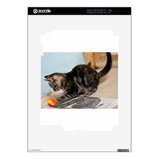 Ráfaga juguetona calcomanías para iPad 2