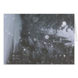 ráfagas del invierno tarjeta de felicitación
