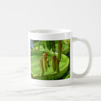 Raffelesia, an exotic tropical plant coffee mug