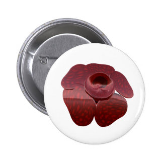 Rafflesia Button