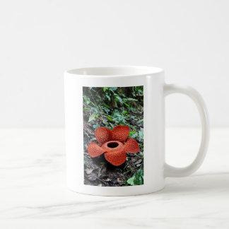 Rafflesia flower Sumatra Coffee Mug