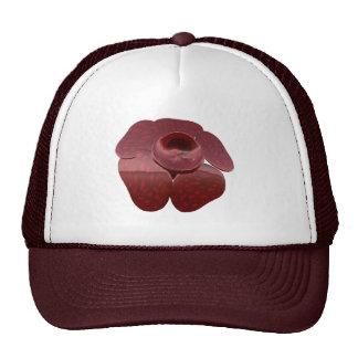 Rafflesia Hat