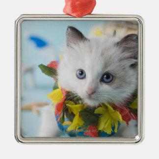 Rag Doll Kitten and Summer Vacation Ornament