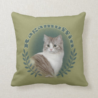 Ragamuffin  Cat Pillows