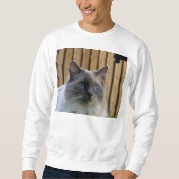 USA Themed Ragdoll,_blue Sweatshirt