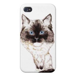 Ragdoll Caricature Covers For iPhone 4