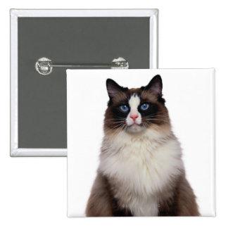 Ragdoll Cat 2 Inch Square Button