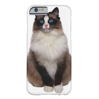 Ragdoll Cat Barely There iPhone 6 Case