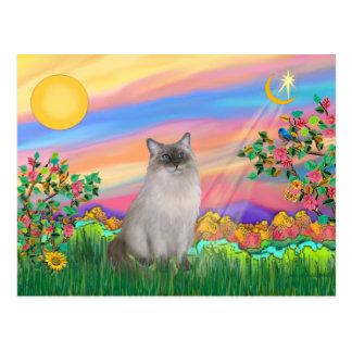 Ragdoll Cat (Blue Point) - Day Star Postcard