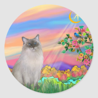 Ragdoll Cat Blue Point - Day Star Stickers