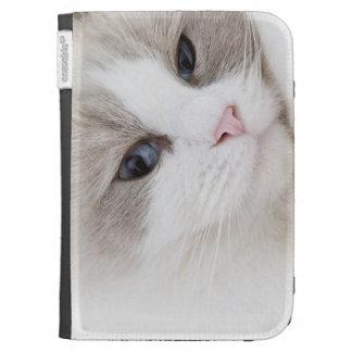 Ragdoll cat kindle covers