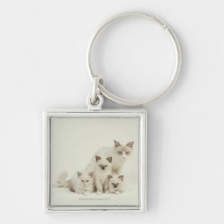 Ragdoll cat female with kittens Silver-Colored square keychain