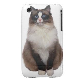 Ragdoll Cat iPhone 3 Case-Mate Case