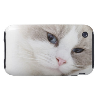 Ragdoll cat iPhone 3 tough cover