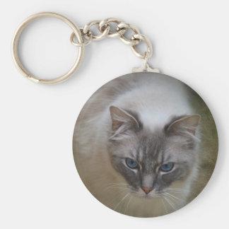 Ragdoll Cat Keyring Keychain