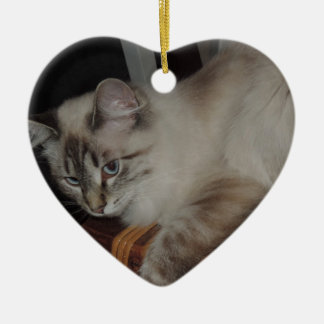 Ragdoll Cat Kitten Original Photo Design Ceramic Ornament