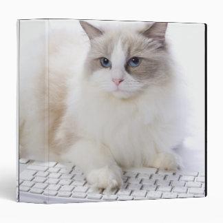 Ragdoll cat on computer keyboard 3 ring binders