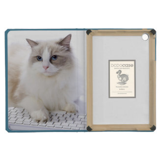 Ragdoll cat on computer keyboard iPad mini cover