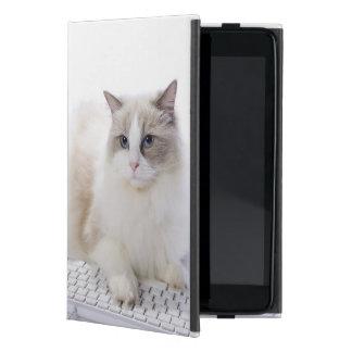Ragdoll cat on computer keyboard iPad mini covers