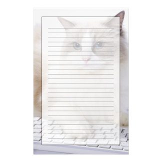 Ragdoll cat on computer keyboard customized stationery