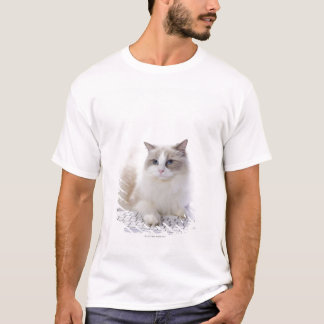 Ragdoll cat on computer keyboard T-Shirt