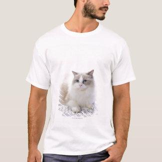 Ragdoll cat on computer keyboard T-Shirt