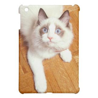 Ragdoll cat on floor, elevated view iPad mini cases