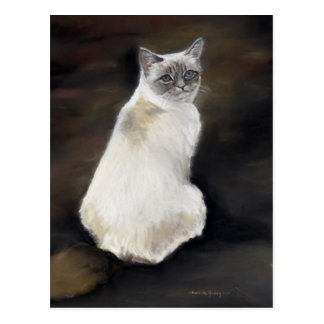 Ragdoll Cat Original Art Postcard