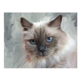 Ragdoll Cat Postcard
