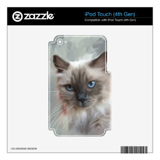 Ragdoll Cat Skin For iPod Touch 4G