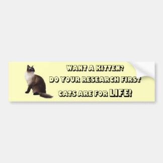 Ragdoll Cats are for life Bumper Sticker