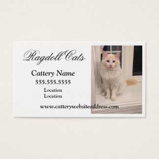 Ragdoll Cattery Business Cards