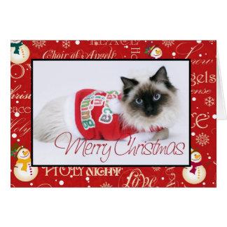 Ragdoll Christmas Card