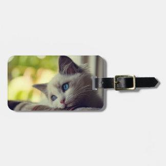 Ragdoll Kitten Bag Tag