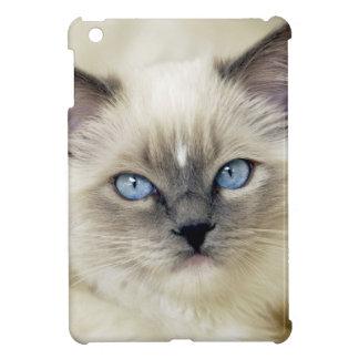 Ragdoll kitten case for the iPad mini