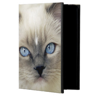 Ragdoll kitten cover for iPad air