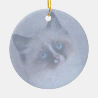 Ragdoll Kitten in Snow ornament