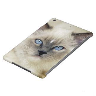 Ragdoll kitten iPad air cover