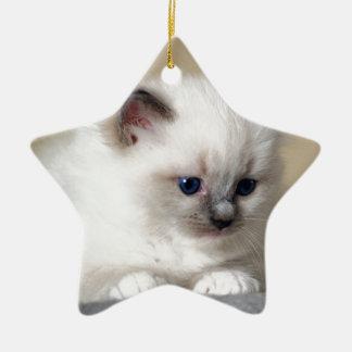 Ragdoll Kitten Ornament