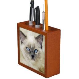 Ragdoll kitten Pencil/Pen holder