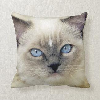 Ragdoll kitten throw pillow