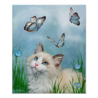 Ragdoll Kitty And Butterflies Art Poster/Print Poster