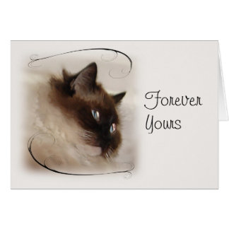 Ragdoll Kitty Cat Forever Yours Card