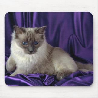 Ragdoll, punto azul tapete de ratón