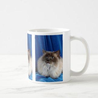 Ragdoll, punto azul taza de café