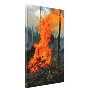 Rage - Midsummer's Eve Canvas Poster Stretched Canvas Print