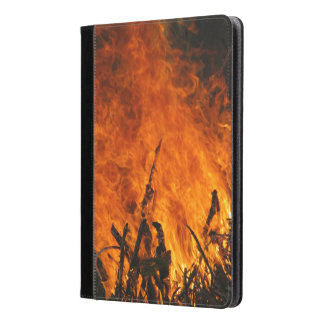 Raging Fire Photograph iPad Air Case