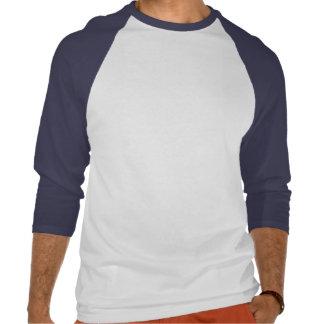 Raglán azul del tres cuartos del retroceso del camisetas