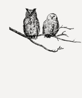 Raglán de las señoras de los búhos de la remeras