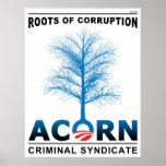 Raíces de la corrupción poster